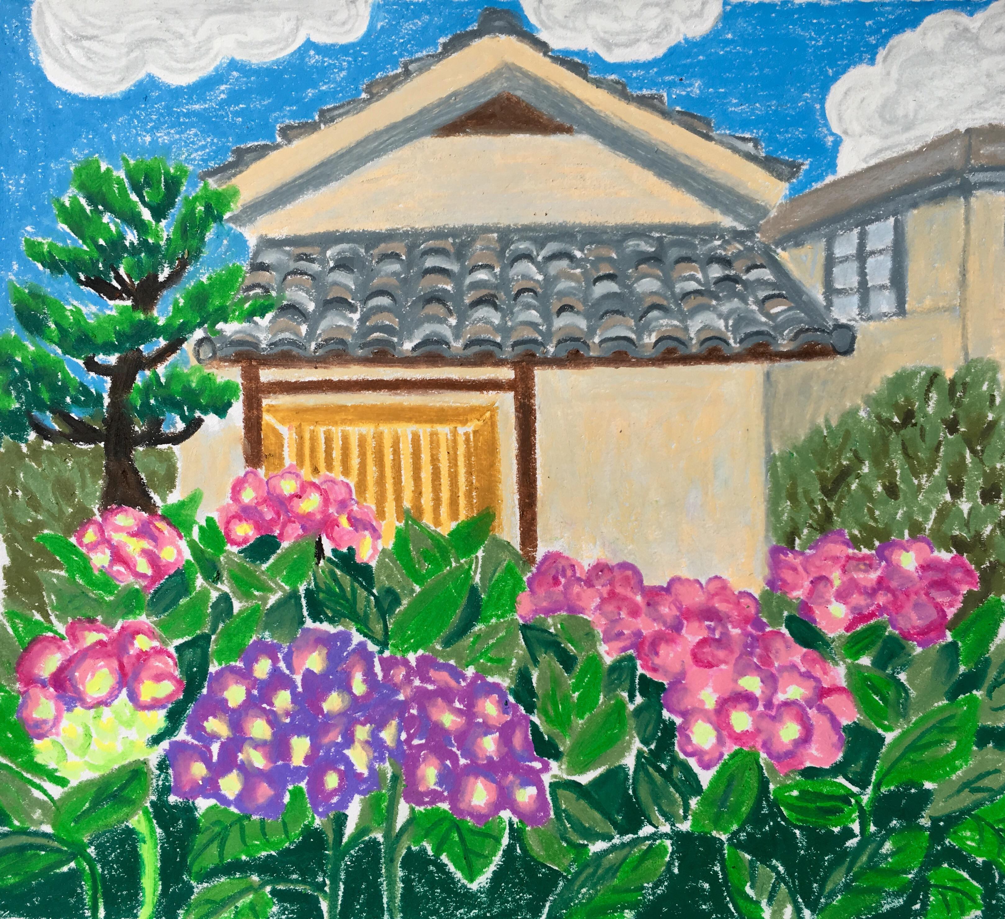 Hydrangea season in Tokyo